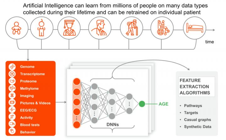 Deep Longevity is focused on AI for biomarker development
