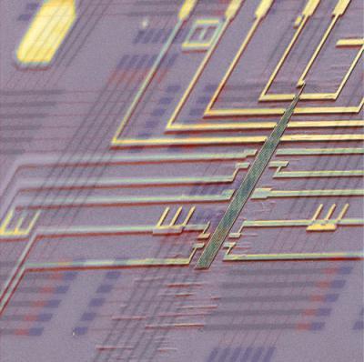 Programmable Nanowire Nanoprocessor super-imposed on a Schematic Nanoprocessor Circuit