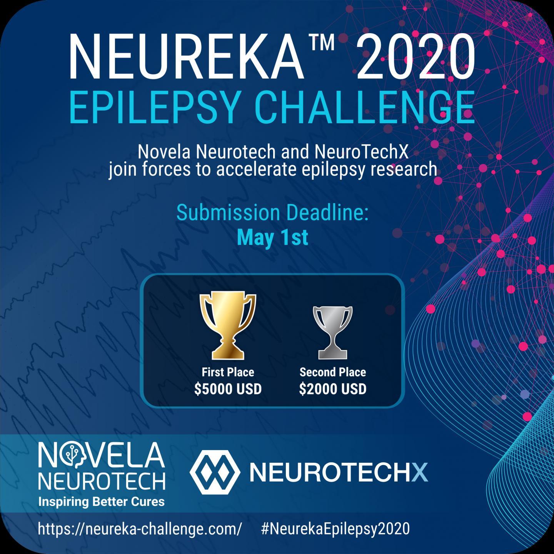 The Neureka Epilepsy Challenge