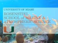U Miami Scientist Rebecca Albright on Ocean Acidification and its Effects on Threatened Coral