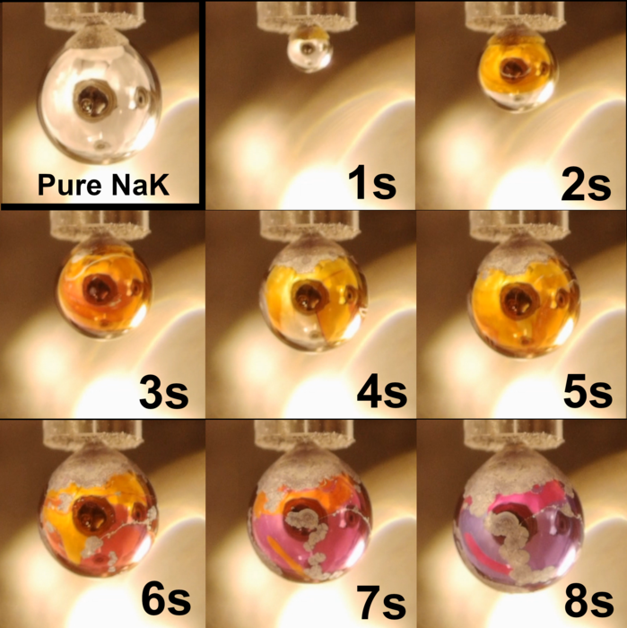 Evolution of the sodium-potassium alloy drop exposed to the action of the water vapor