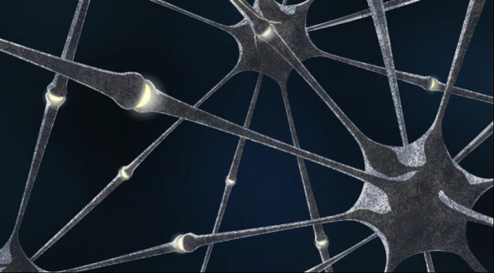 Neuron Connections