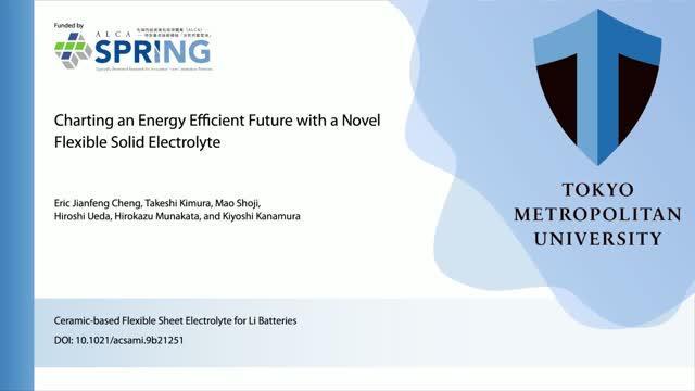 Ceramic-Based Flexible Sheet Electrolyte for Li Batteries