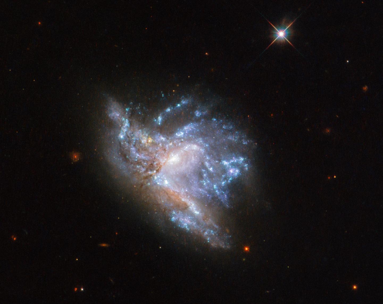 NGC 6052
