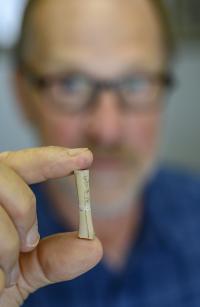 2,500-Year-Old Bird Femur Yields DNA