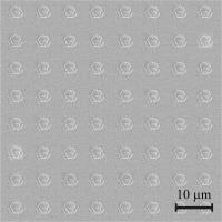 Nanophotonic Chip (Magnified)