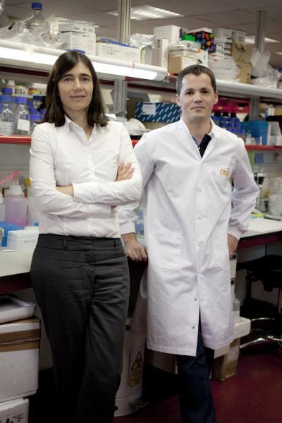 Maria A. Blasco and Bruno M. Bernardes de Jesus, Centro Nacional de Investigaciones Oncologicas