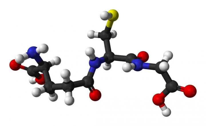 Structure of Glutathione