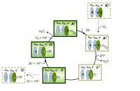 Mechanism of bd Cytochrome