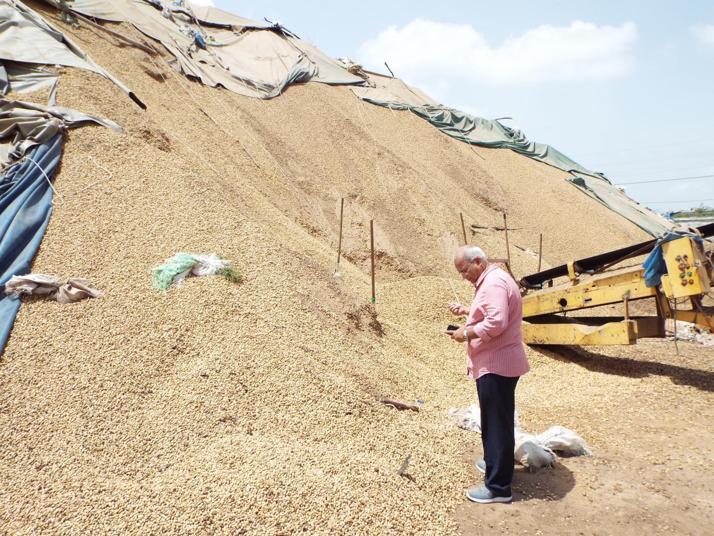 Ranajit Bandyopadhyay? in Front of Groundnut Pile