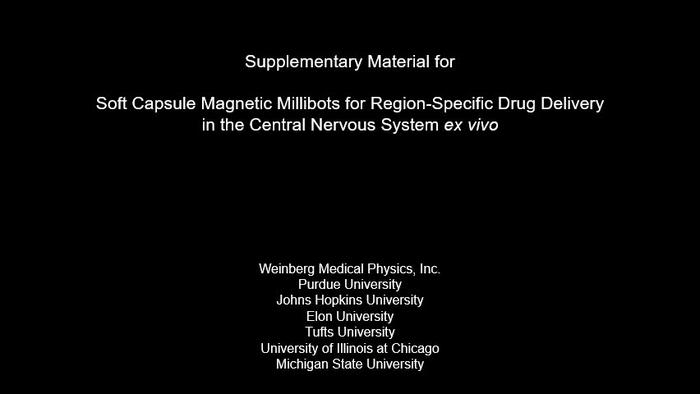 Soft Capsule Magnetic Millirobots for Region-Specific Drug Delivery in the Central Nervous System