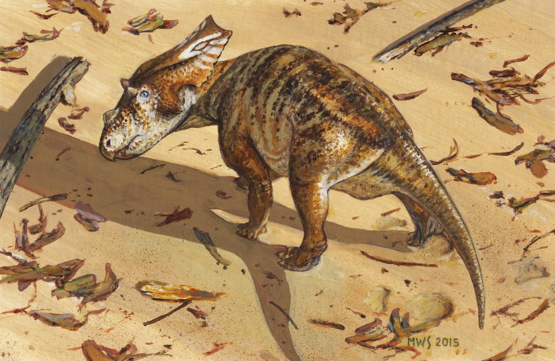 Life Reconstruction of Baby <em>Chasmosaurus</em>