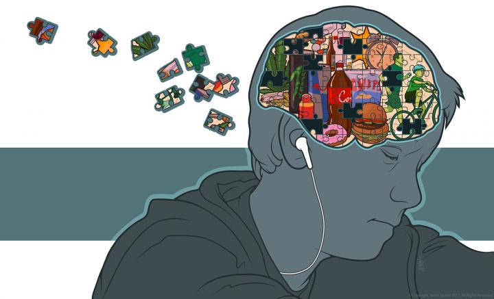 <i>Birth Defects Research: The Teenage Brain</i>