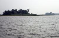 Forest Island Isla Manechi (left) in the Barba Azul Nature Reserve