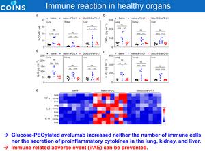 正常組織における免疫反応