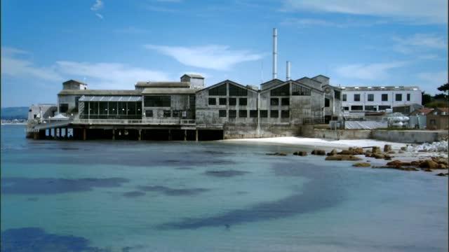 Bluefin Tuna at Hopkins Marine Station