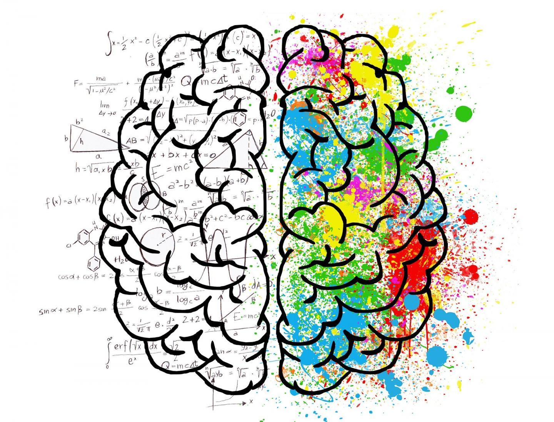 The Brain: Scientific and Creative