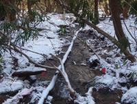 Ecosystem Services in Streams - Winter