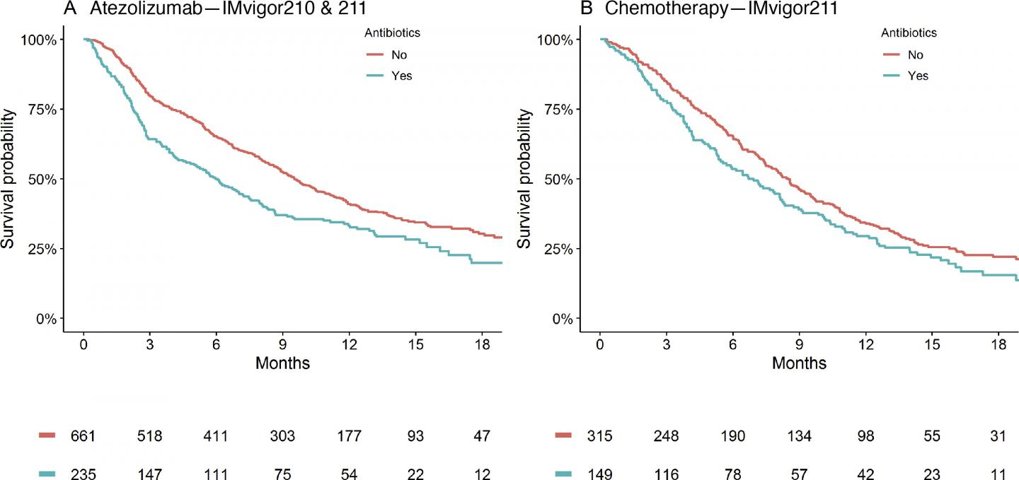 Graph: Antibiotic Overuse Reduces Urothelial Cancer