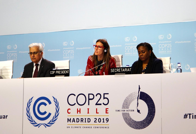 A Plenary at COP25