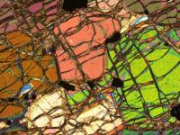 Thin Section of the 3,8 Billion-Year-Old Mantle Rock from Southwestern Greenland