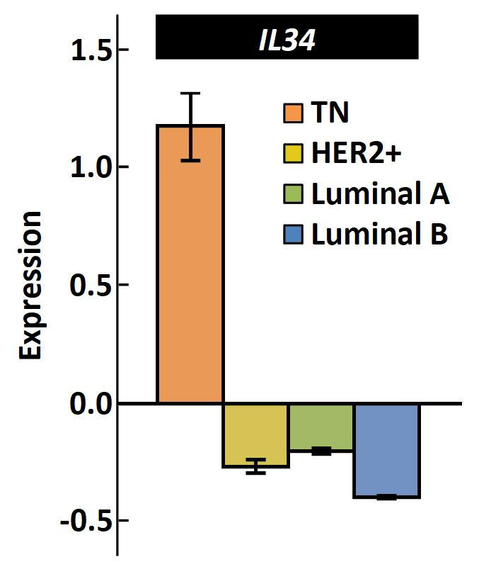IL-34 Expression in Breast Cancer