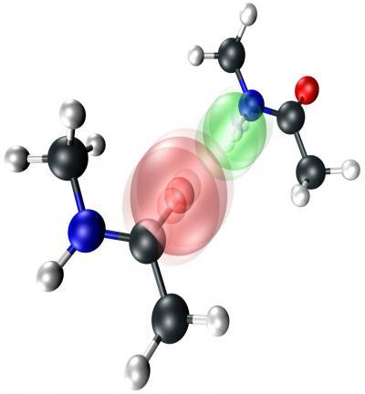 Intermolecular Vibration of the NMA Dimer