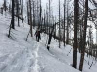 Forest Fires Accelerating Snowmelt across Western US, Study Finds (2 of 2)