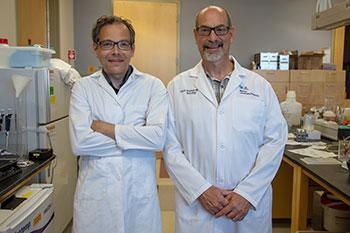 Torsten Falk, PhD, and Scott Sherman, MD, PhD