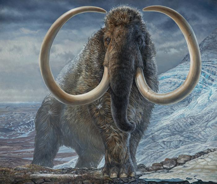 Mammoth_painting_Havens.jpg