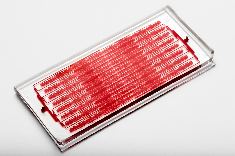 Cluster-Chip