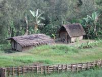 Field Accommodations