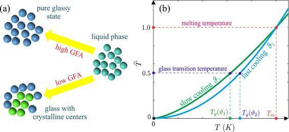 glass-forming-liquids