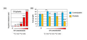 Figure 3. Detection of octylphenol (OP) using transgenic plants with introduced ER gene