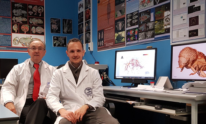 Professor Javier Alba-Tercedor with Ignacio Alba-Alejandre in the Laboratory