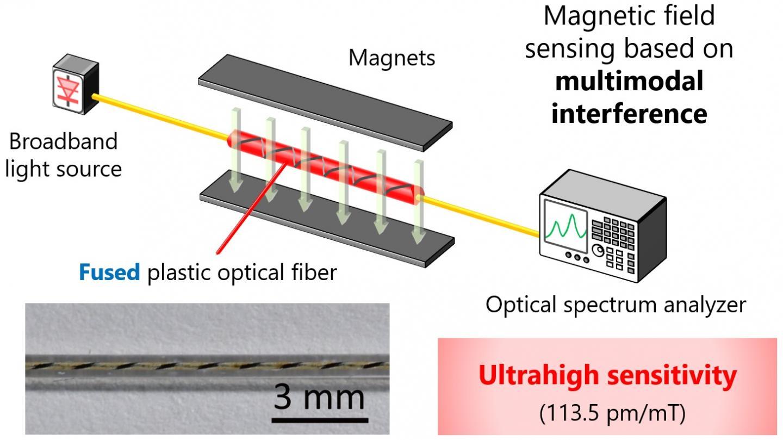 Highly sensitive fiber-optic intrinsic magnetic field sensor