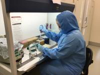 Anne Kathrine Wiborg Runge sampling in the laboratory