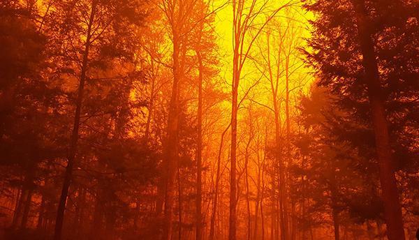 Chimney Tops 2 Fire