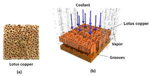 Cooling mechanism by two-phase immersion