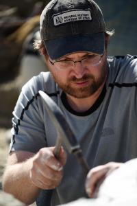 NHMU Paleontologist Prepares Tyrannosaur Fossil