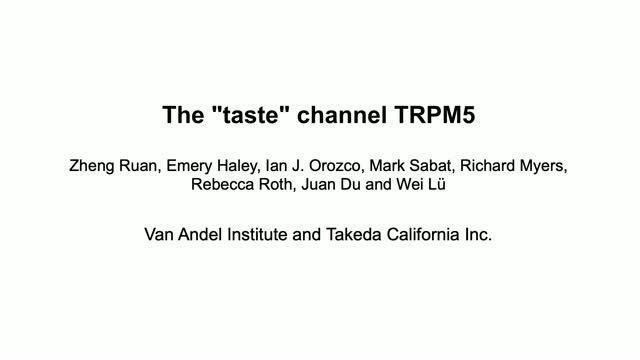 "The ""taste"" channel TRPM5"