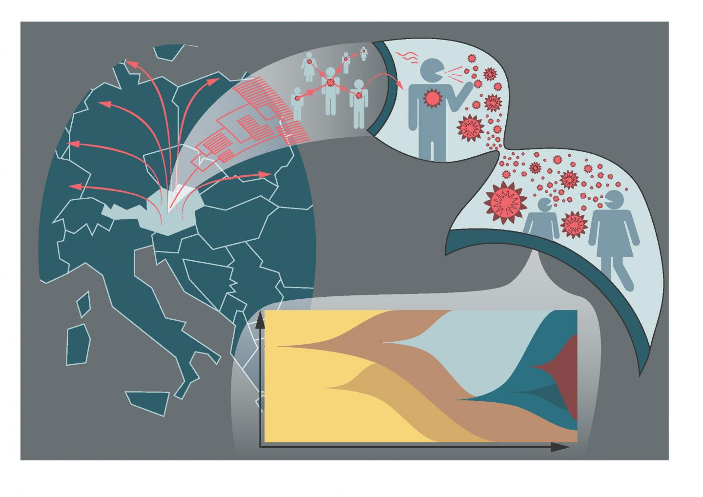 Illustration: Graphical abstract