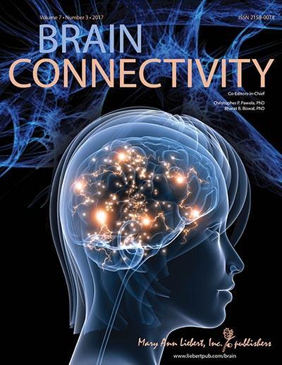 <em>Brain Connectivity</em>