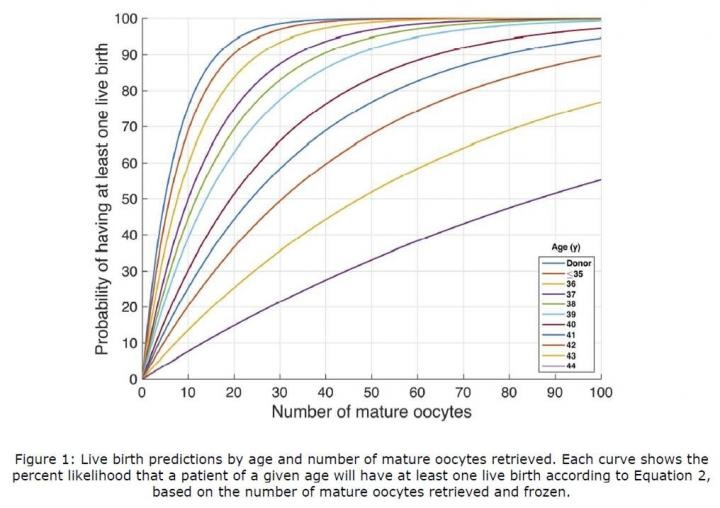 Live Birth Predictions Based on Age and Number of Mature Eggs Frozen