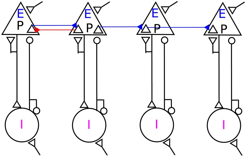 Loop, Resonate, and Accelerate!