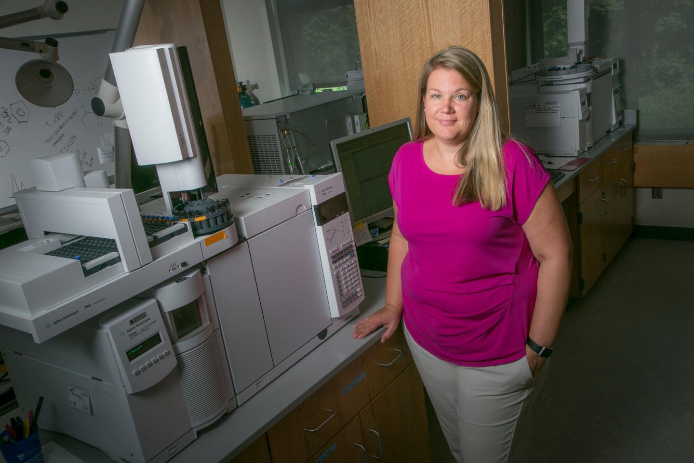Heather Stapleton, Duke University