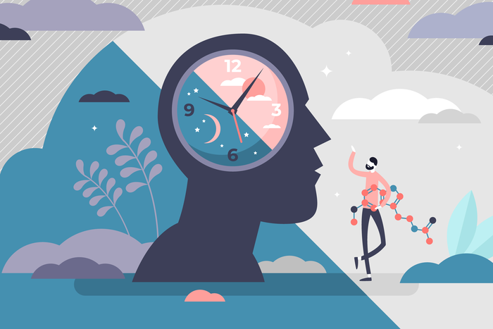 environmental images of circadian rhythms