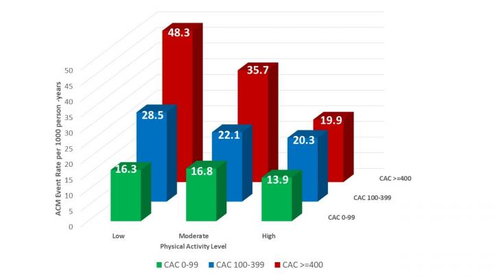 Atherosclerosis Screening Plus Physical Activity Assessment