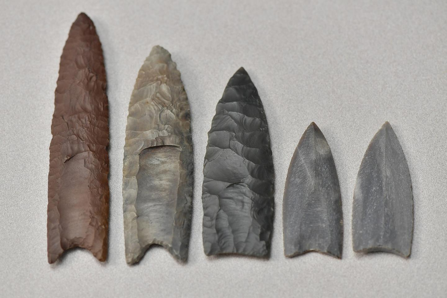 A Collection of Clovis Point Replicas and Casts
