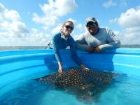 FAU Harbor Branch Scientists First to Characterize  Ecology of this 'Near Threatened' Species in Florida